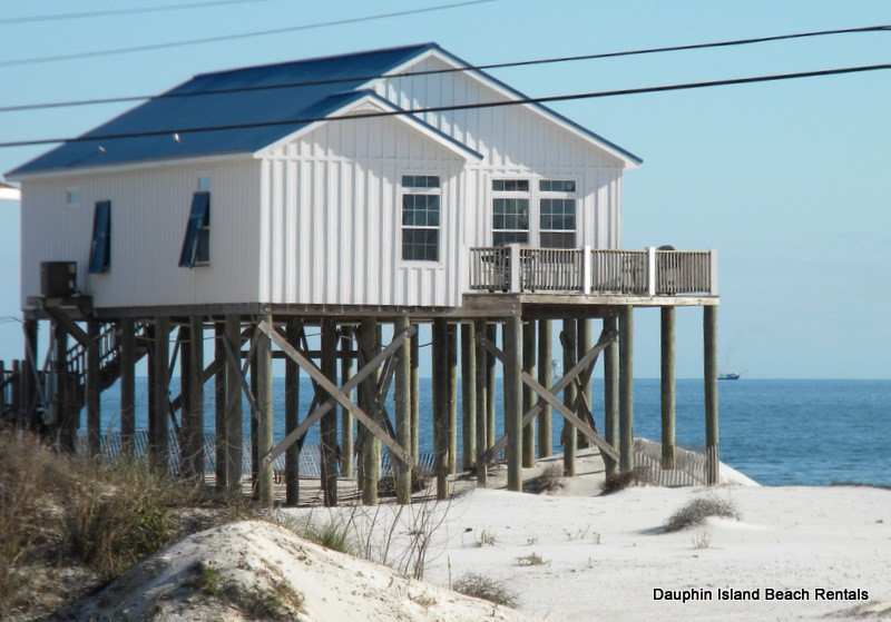 Large Selection of Dauphin Island Pet-Friendly Rentals- right on the beach!